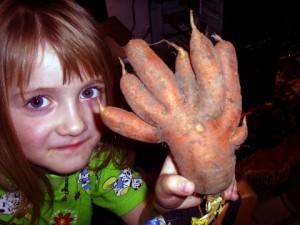 Морковь в навозе