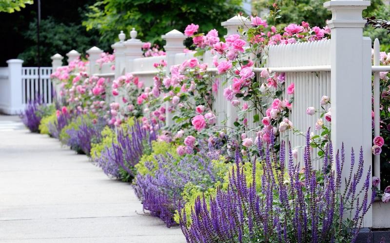 Во что можно посадить цветы: 45 оригинальных идей