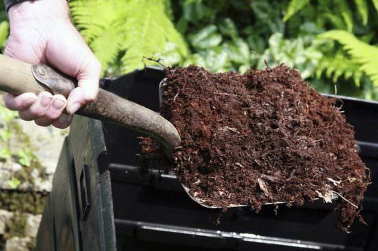Технология правильной подкормки земли весной