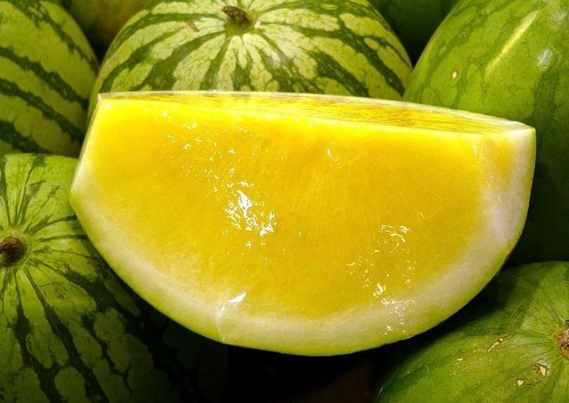 Описание желтого арбуза