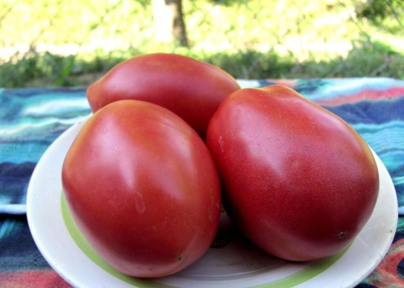 Характеристика сорта томатов Розовый фламинго