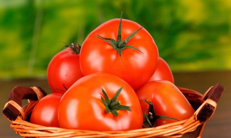 Томат Снегопад F1: описание и характеристика сорта, отзывы об урожайности и биотехнике помидоров, фото семян