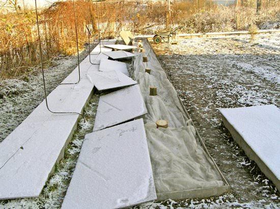 Особенности посадки и правила ухода за клематисами осенью
