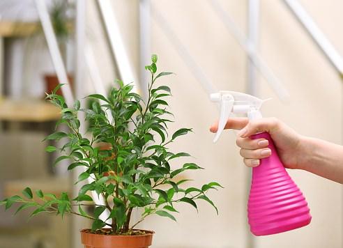 сода убивает паразитов в организме