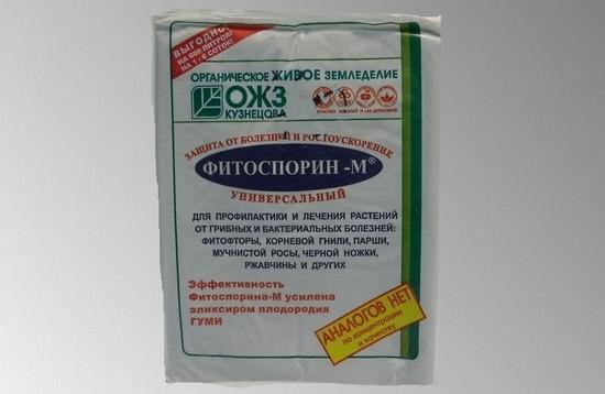 Фитоспорин-М: инструкция по применению пасты, порошка и препарата в жидком виде