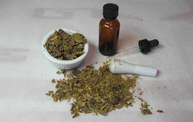 Лекарственные свойства и применение в народной медицине грушанки круглолистной