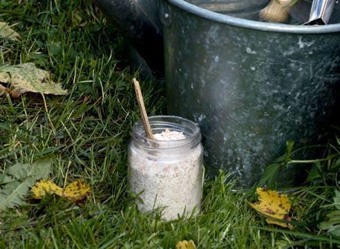 Технология и сроки известкования почвы