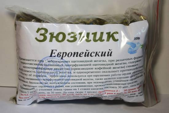 Зюзник европейский (сердечная трава): лечебные свойства и употребление растения