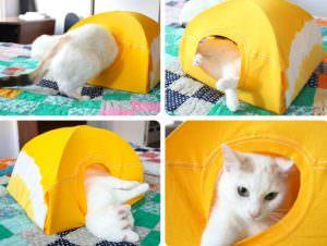 Как выбрать или сделать своими руками домик для кота