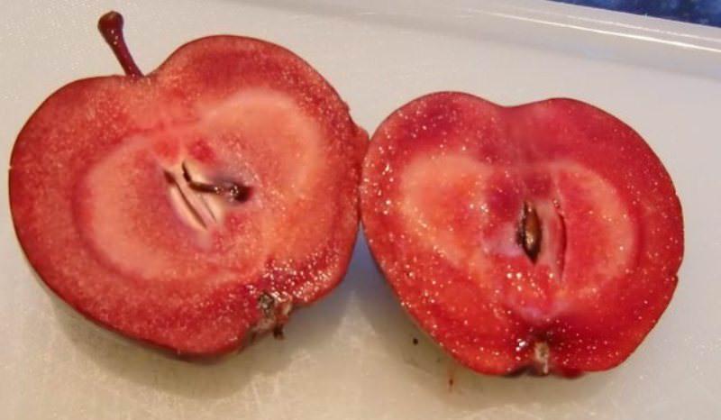 Чем хорош гибрид яблоко-помидор
