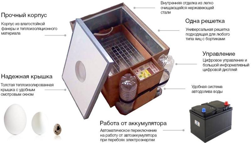 Как сделать инкубатор своими руками?