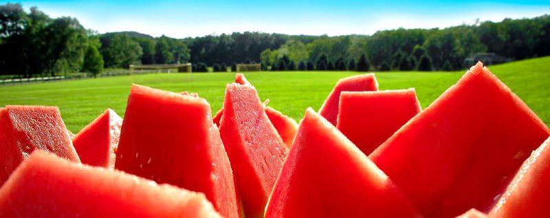 Арбуз: состав, калорийность, полезные свойства