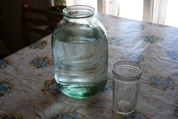 Березовый сок: польза, сбор, заготовка на зиму