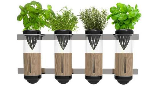 Гидропоника – уникальный метод выращивания без земли