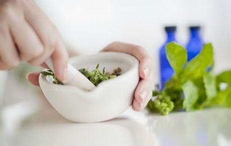 Живокость полевая: описание лечебных свойств и способов применения в народной медицине