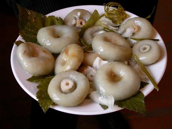 Как солить грузди: 4 проверенных рецепта и секреты подготовки грибов