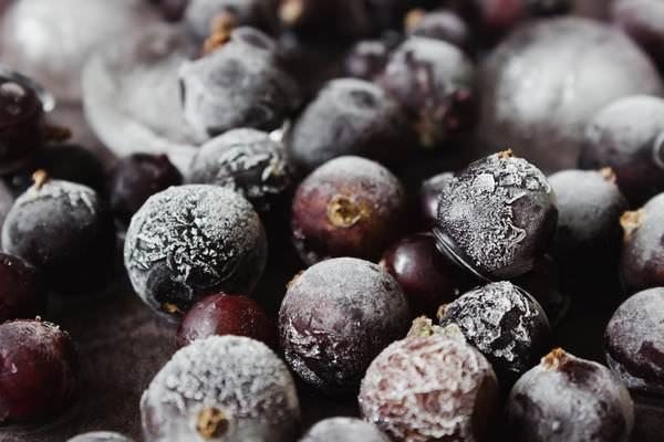 Компот из черной смородины: 5 рецептов аппетитного напитка