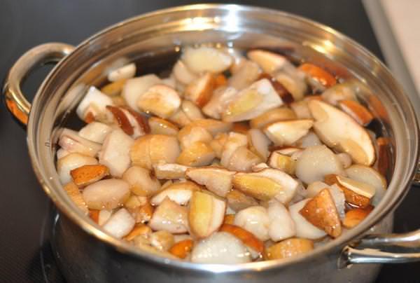 Маринованные белые грибы: 4 вкуснейших рецепта
