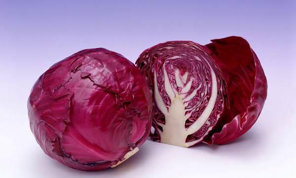 Хрустящих рецептов: как квасить капусту