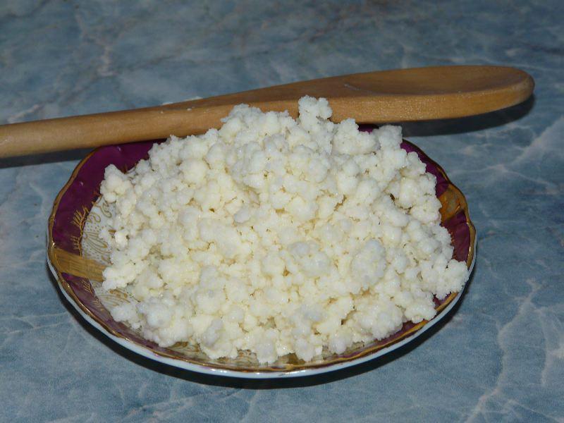 Молочный гриб: полезные свойства, особенности ухода и употребления