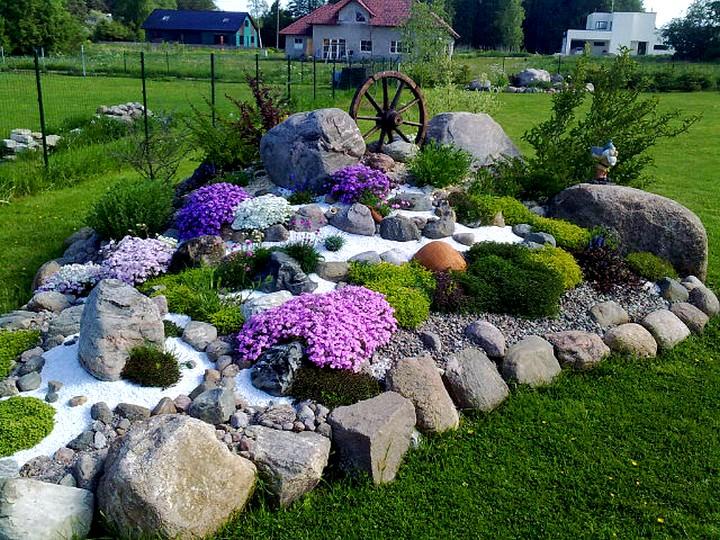 Выбор и размещение растений на альпийской горке