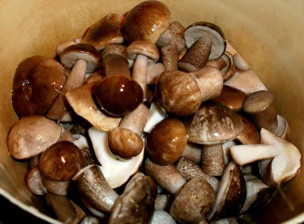 Маринованные подберезовики: 4 чудесных рецепта