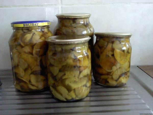 Засолка волнушек: 6 простых рецептов
