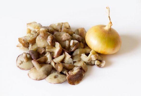 Грибы маслята: описание видов и рецепты приготовления