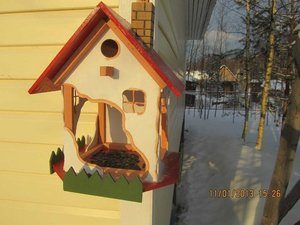 Лучшие идеи по самостоятельному изготовлению кормушек для птиц