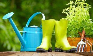 Что Вам может понадобиться для ухода за садом и огородом