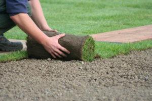 Укладка рулонного газона под ключ: выбор сорта, технология и преимущества