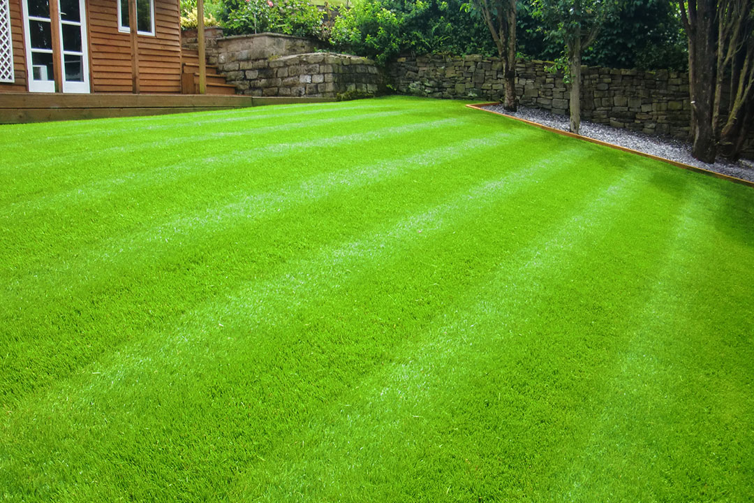 Как укладывается рулонный газон