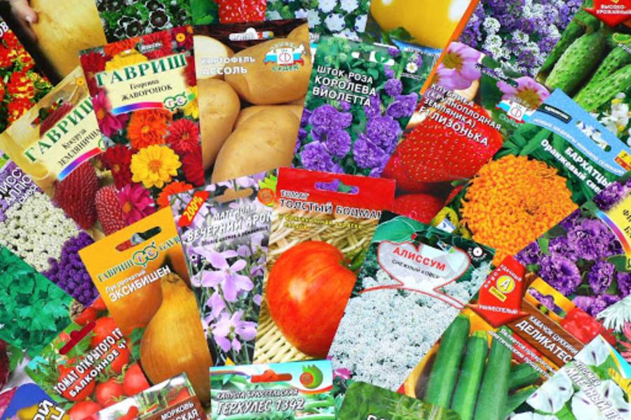 Лучшие семена почтой в интернет-магазине Агромакет