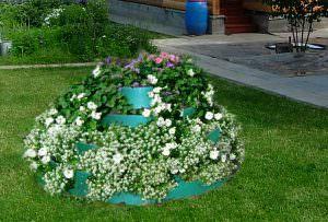 Цветы для многоярусной клумбы